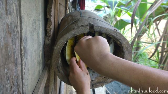 tổ ong mật nuôi tự nhiên nơi hiên nhà
