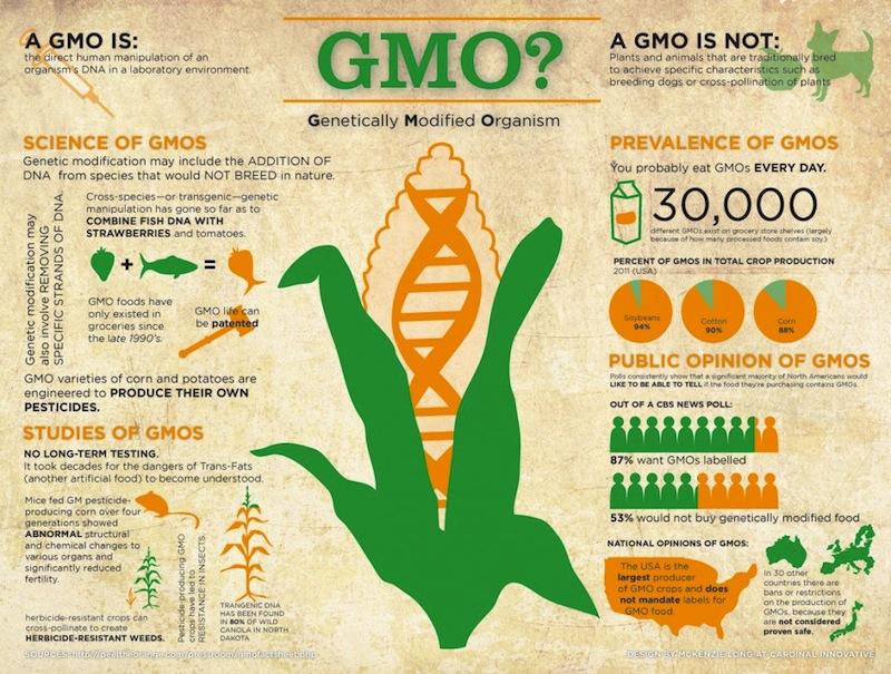 Sơ đồ mô tả tác động của con người lên gen các loài sinh vật, nhằm tạo ra loài mới