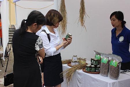 Mạch Nha Nhân Thuỳ Food
