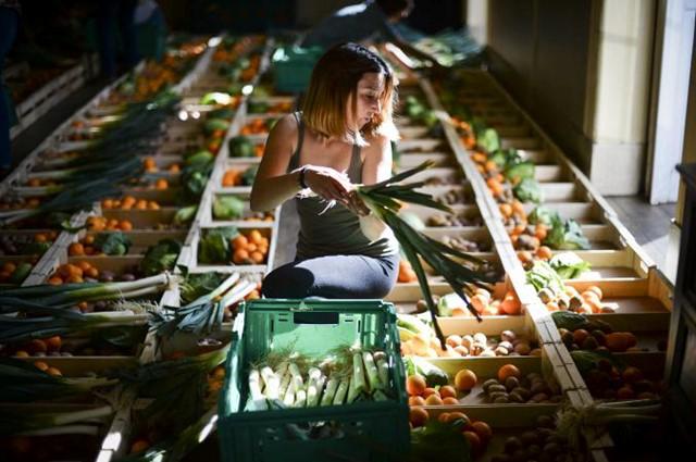 """Một khoảng khắc đẹp tại """"Chợ nông sản xấu xí"""" ở vùng Lisbon, Bồ Đào Nha. Những loại thực phẩm đẹp mắt luôn được người tiêu dùng lựa chọn và do đó, nông sản bị lỗi không thể đạt chuẩn để bán tại các siêu thị. Người ta đã chọn ra giải pháp là hình thành nên các chợ nông sản xấu, nơi mà chúng sẽ được chiết khấu, đảm bảo người nông dân vẫn bán được hàng và trong năm đầu tiên thực hiện mô hình này, 50 tấn nông sản đã được dùng thay vì đưa vào thùng rác."""