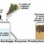 Chế phẩm diệt côn trùng và tẩy rửa từ rác.