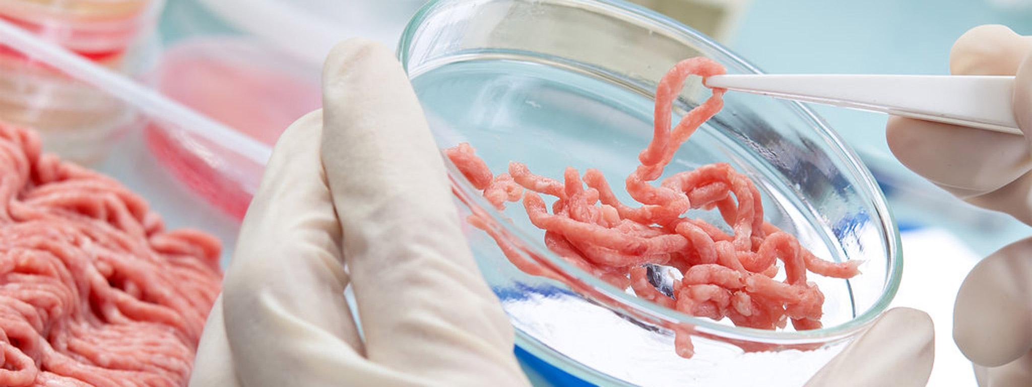 thịt tạo ra từ phòng thí nghiệm bằng việc nuôi tế bào thịt thật.